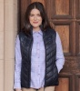 Hoggs of Fife - Millie Ladies Soft Padded Gilet - Dark Navy