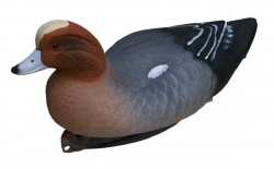 Flambeau Eurasian Wigeon Duck Decoys - Pack of 6
